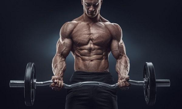 Quelles sont les meilleures applications pour faire de la musculation